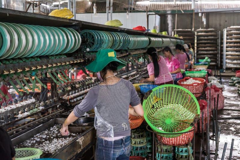 Ouvriers en soie photo stock
