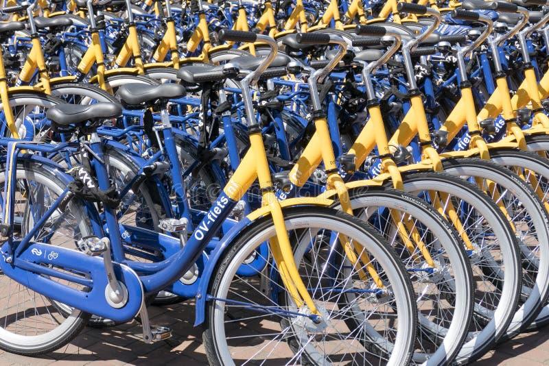 OV czynsz jechać na rowerze od Holenderskich kolei zdjęcie stock