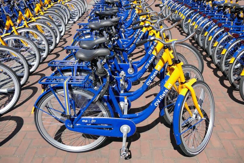 OV czynsz jechać na rowerze od Holenderskich kolei fotografia stock