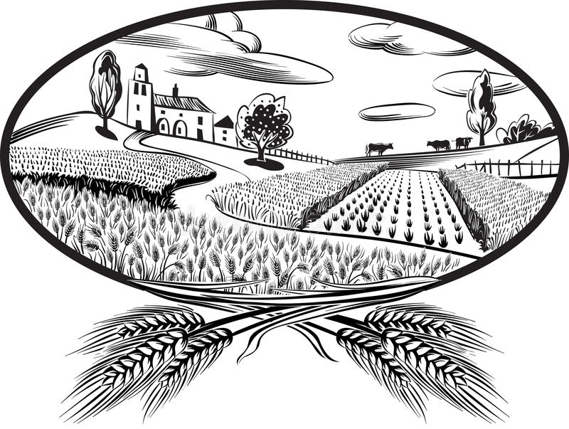 Oval with ears of wheat. And landscape with cultivated fields royalty free illustration