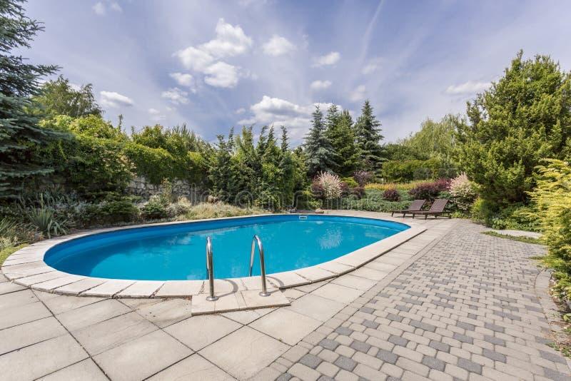 Ovaler Swimmingpool im Garten lizenzfreie stockbilder