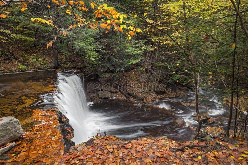 Ovanför Oneida Falls arkivbild