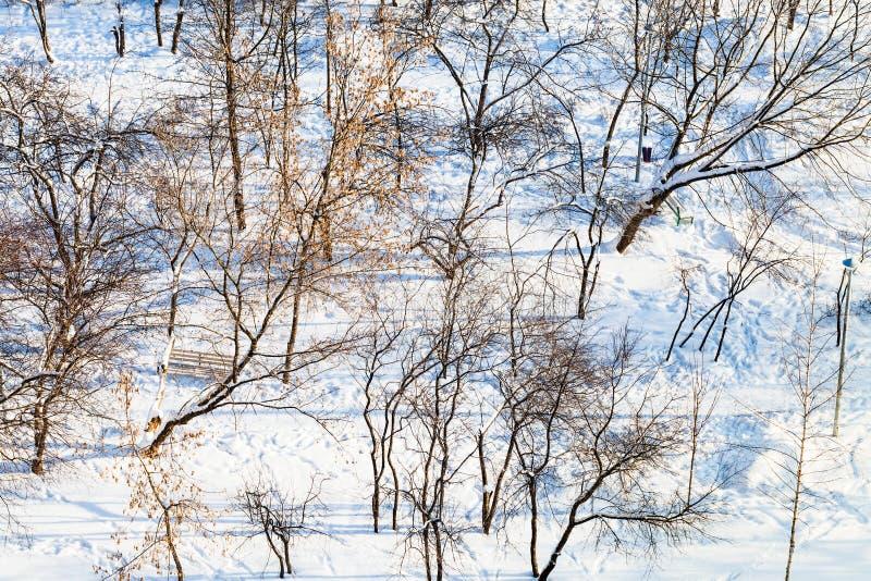 Ovanför sikten av stadsträdgården som täckas av snö royaltyfria bilder