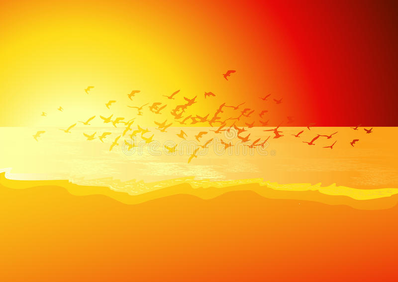 ovanför solnedgång för fågelflockhav royaltyfri illustrationer