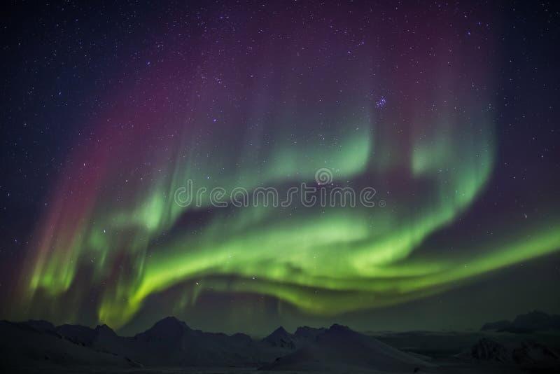 Ovanliga färgrika nordliga ljus - arktiskt vinterlandskap royaltyfri foto
