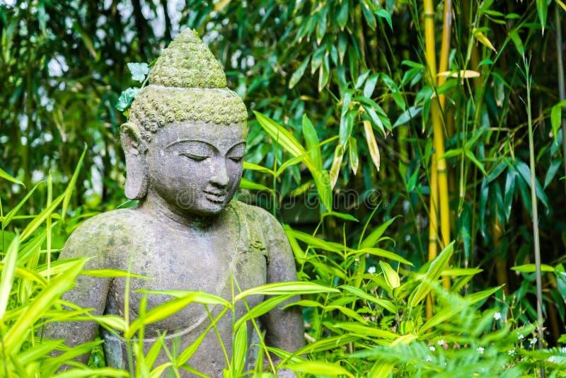 Oveergrown Buddha ogródu statua zdjęcie royalty free