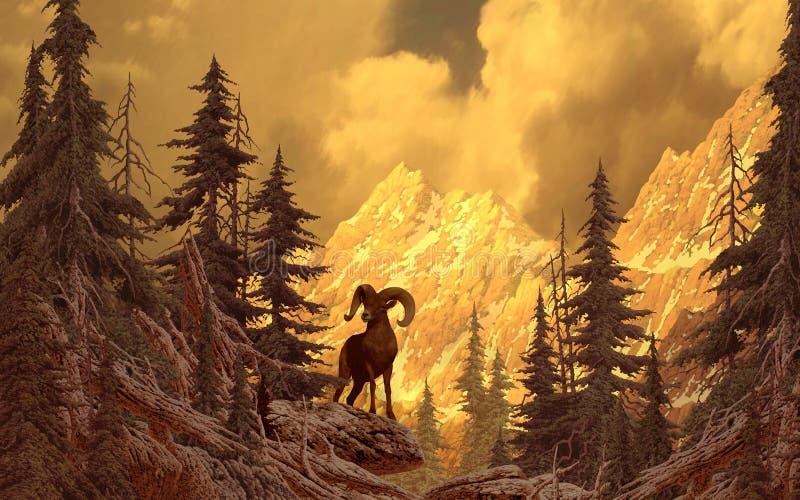 Ovejas de Bighorn en las montañas rocosas stock de ilustración