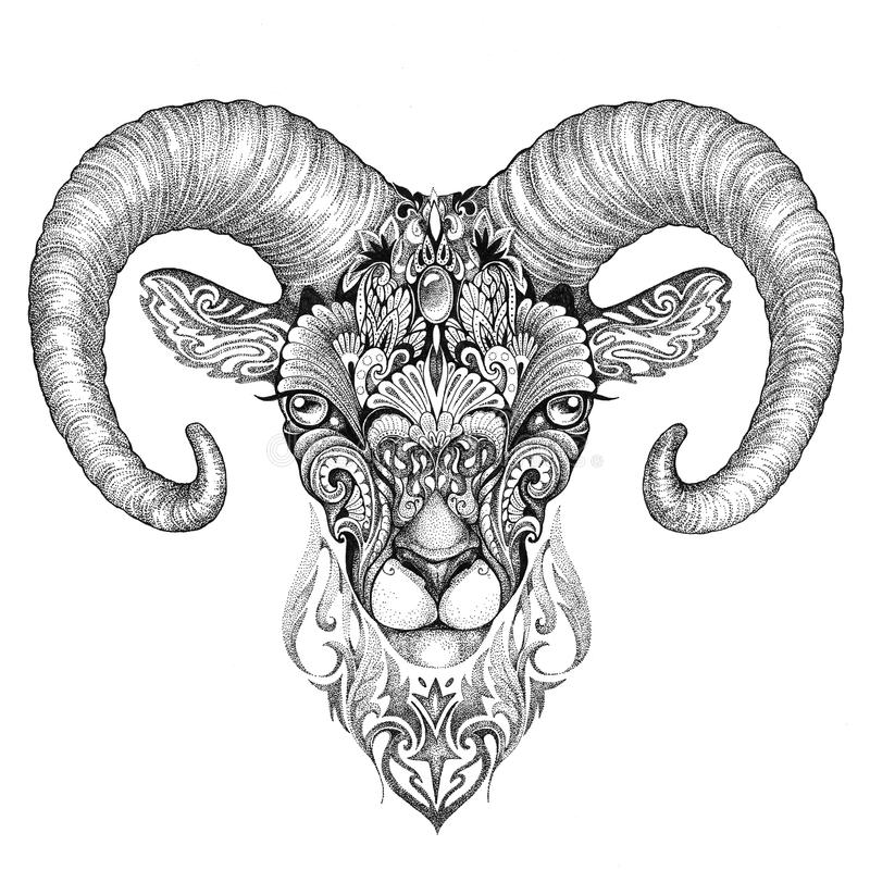 Ovejas de montaña, argali, dibujo blanco y negro de la tinta stock de ilustración