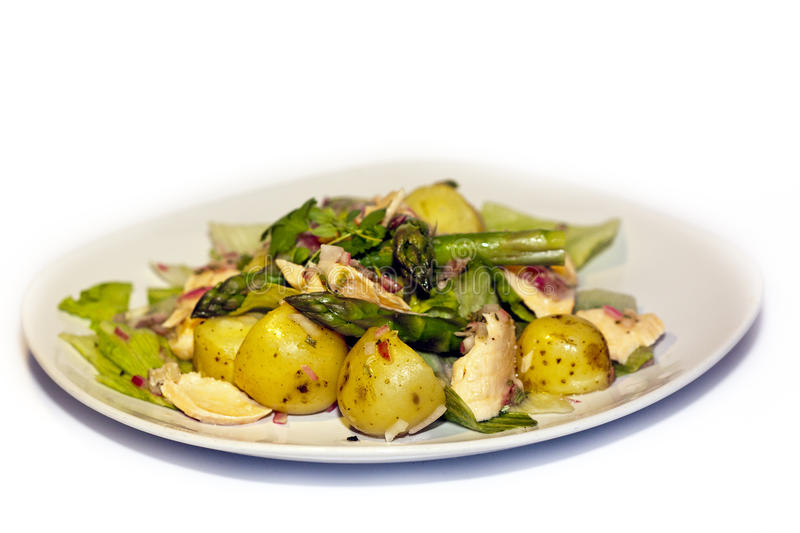 Oven baked Salmon, new potatoes and saute asparagu. S with vinaigrette dressing, finally chopped red onion drizzled on top royalty free stock photography