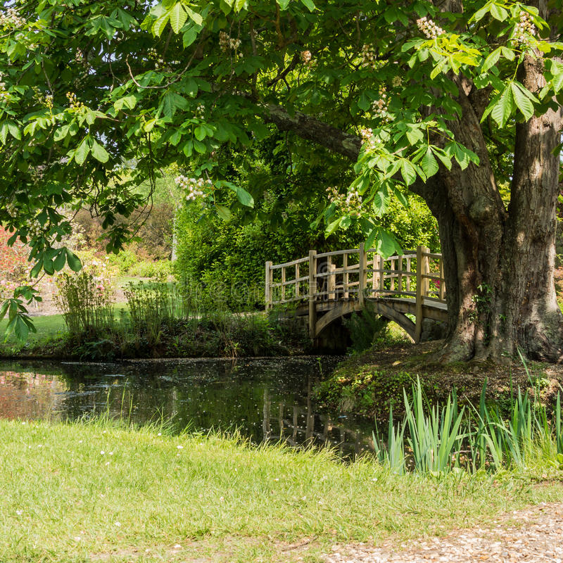 Download Over The Bridge stock image. Image of pond, turf, hampshire - 27851987