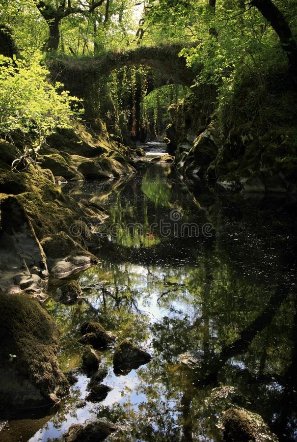 Over grown Faerie bridges spanning a deep gorge to a river. Beautiful and enchanting, over grown with trees, trailing ivy and creepers, the Faerie bridges royalty free stock photo