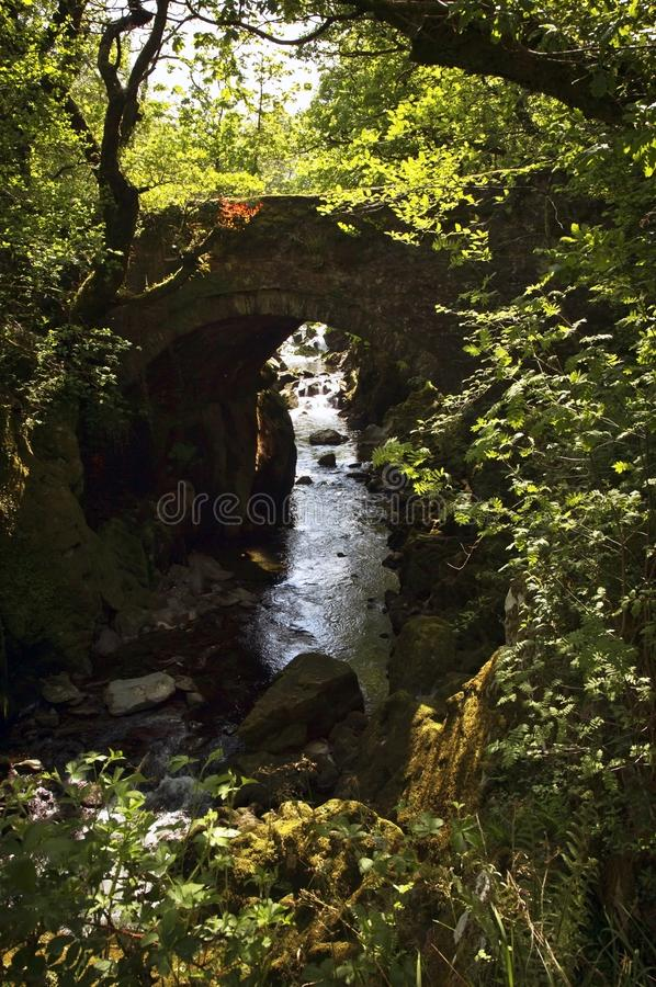 Over grown Faerie Footbridge spanning a deep gorge to a river. Beautiful and enchanting, over grown with trees, trailing ivy and creepers, the Faerie Footbridge stock photo