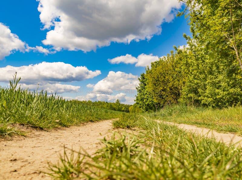 Over het landschap, kunnen de witte wolken in een heldere blauwe hemel worden gezien Tussen gebieden en struiken leidt een zandig stock foto