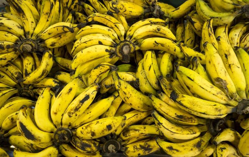 Over rijpe bananenachtergrond in markt, hoogste mening en defocus stock afbeeldingen