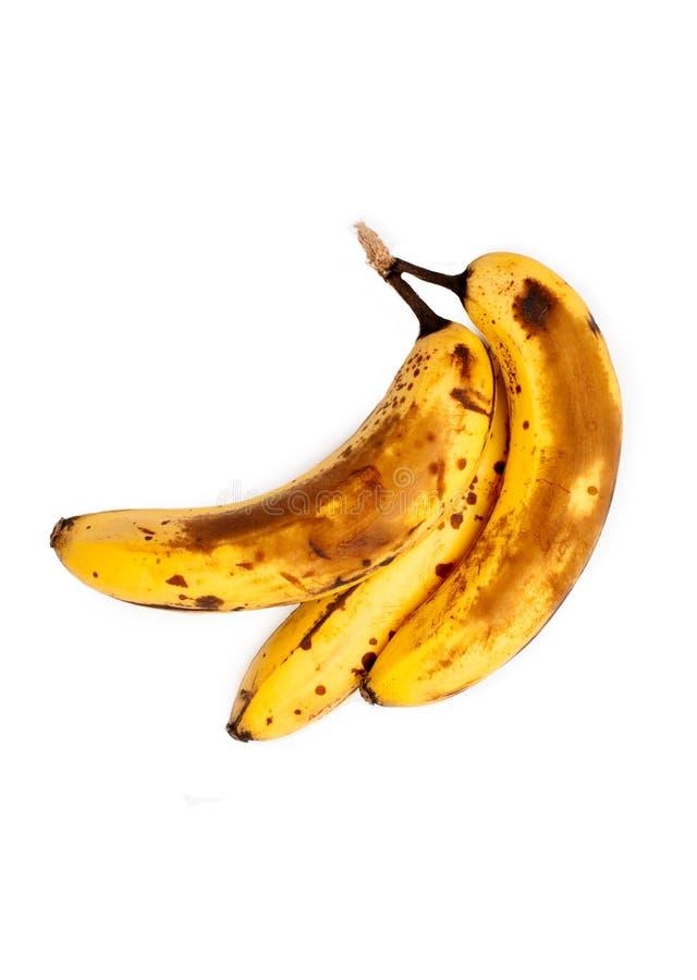 Over Rijpe Geïsoleerde Bananen stock foto