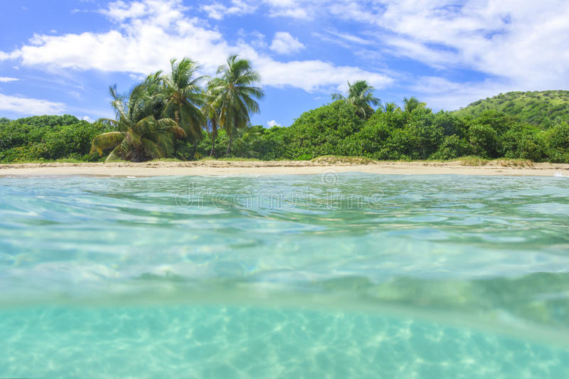 Over under shot of tropical beach. Over under shot of unspoilt tropical Zoni Beach on Caribbean island of Isla Culebra with coconut palms and clear turquoise royalty free stock photos
