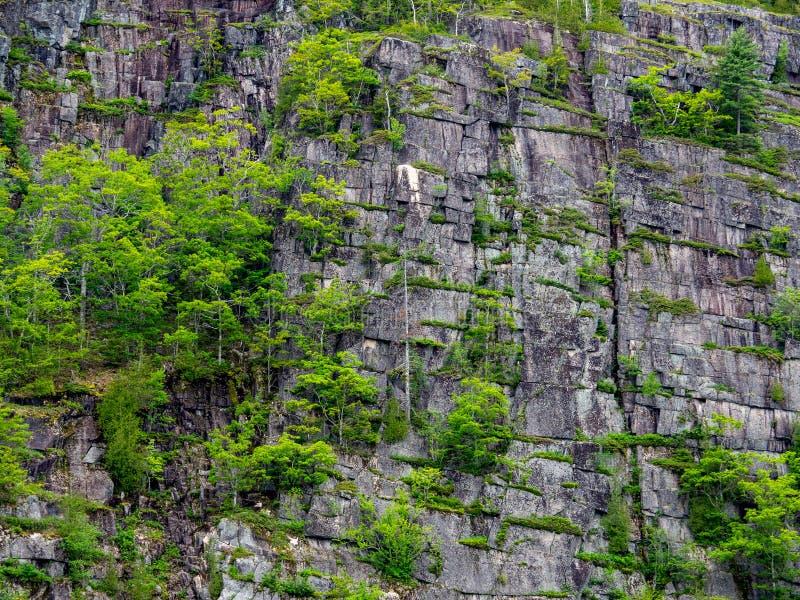 Rocky Cliffs Along the Coast of Maine royalty free stock photos