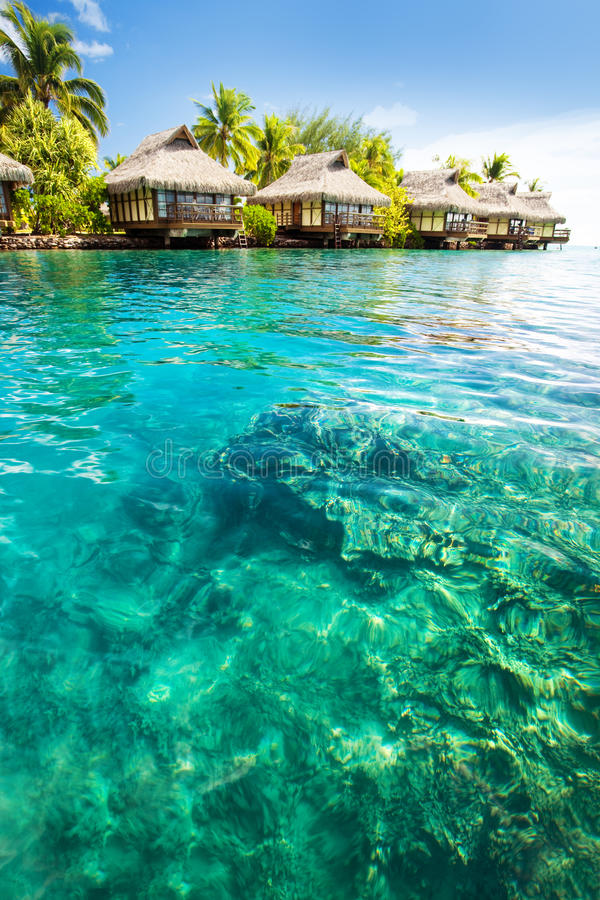 Over water bungalows with steps into green lagoon