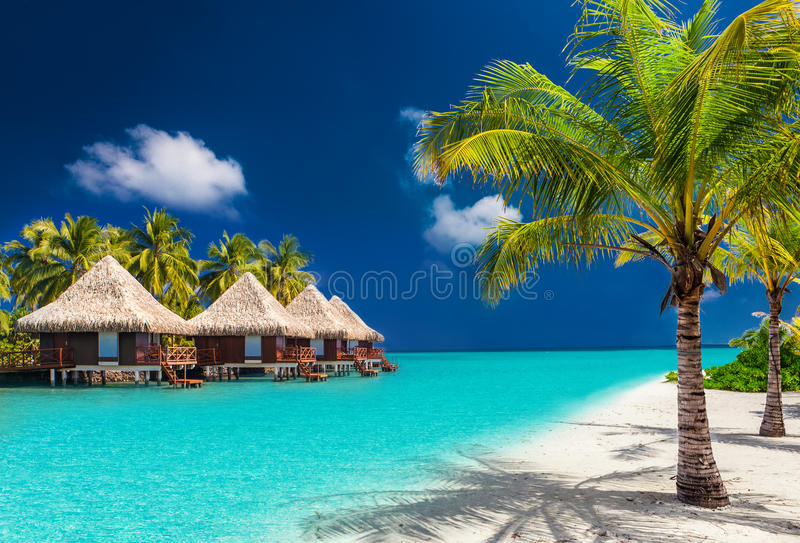 Over water bungalows on a tropical island with palm trees royalty free stock photo