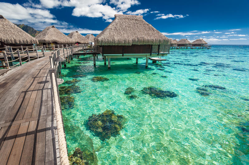 Over water villas on a tropical lagoon of Moorea Island, Tahiti. Traditional over water villas on a tropical lagoon of Moorea Island, Tahiti royalty free stock photo