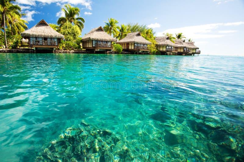 Over waterbungalowwen met stappen in groene lagune stock afbeelding
