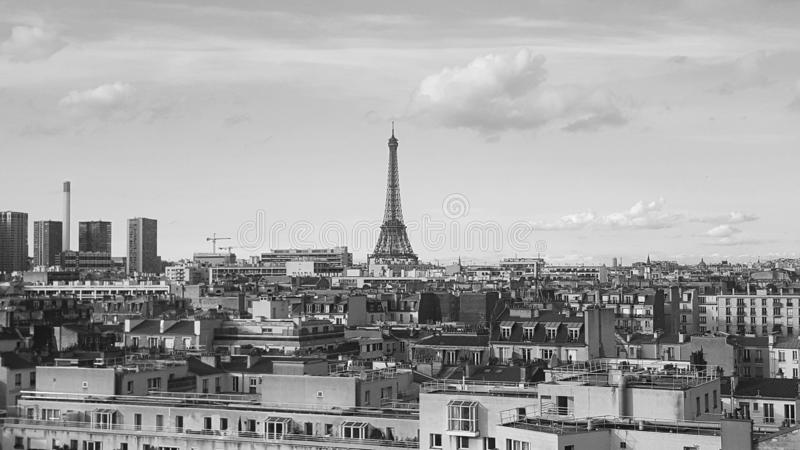The overall view of Paris and the Eiffel tower royalty free stock photo