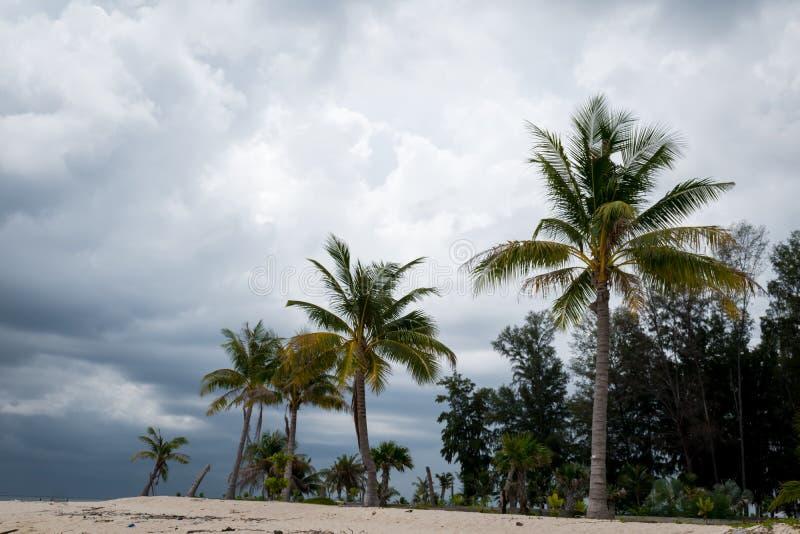 Overcast неба на пляже, нет очень славного дня для перемещения стоковое изображение rf