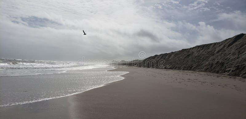 Overcast beach day stock photos