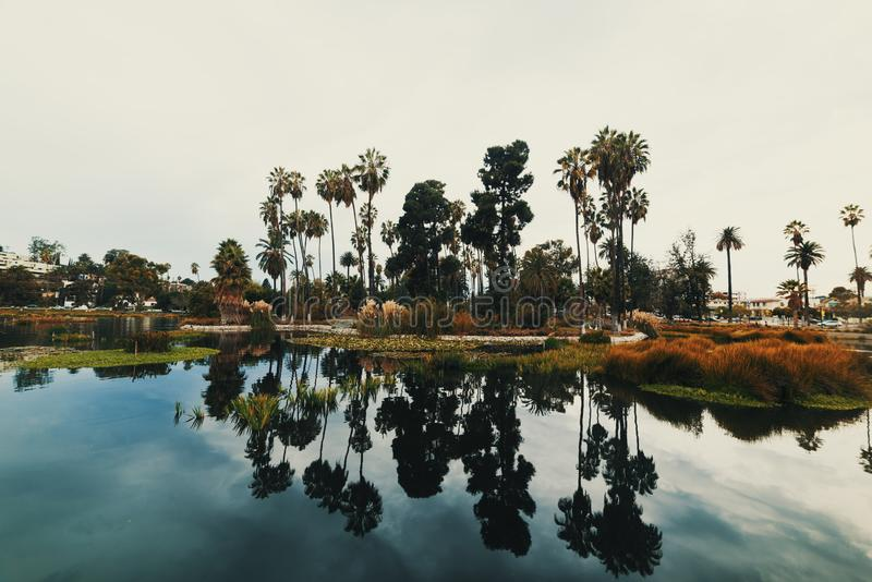 Overcast sky over Echo park lake in Los Angeles royalty free stock image