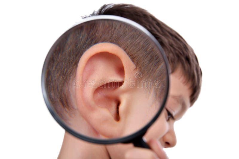 Overdrijvend oor royalty-vrije stock fotografie