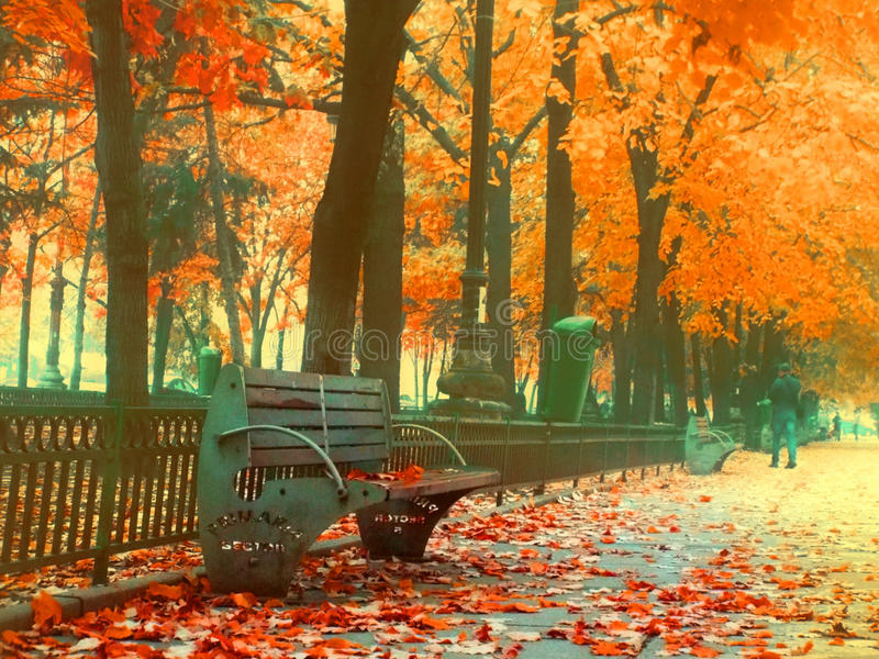Overfiltered urban sofa on the street from bucharest in a autumn foggy day stock image