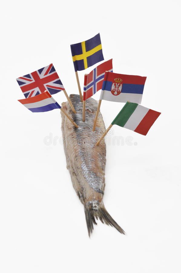 overfishing obraz stock