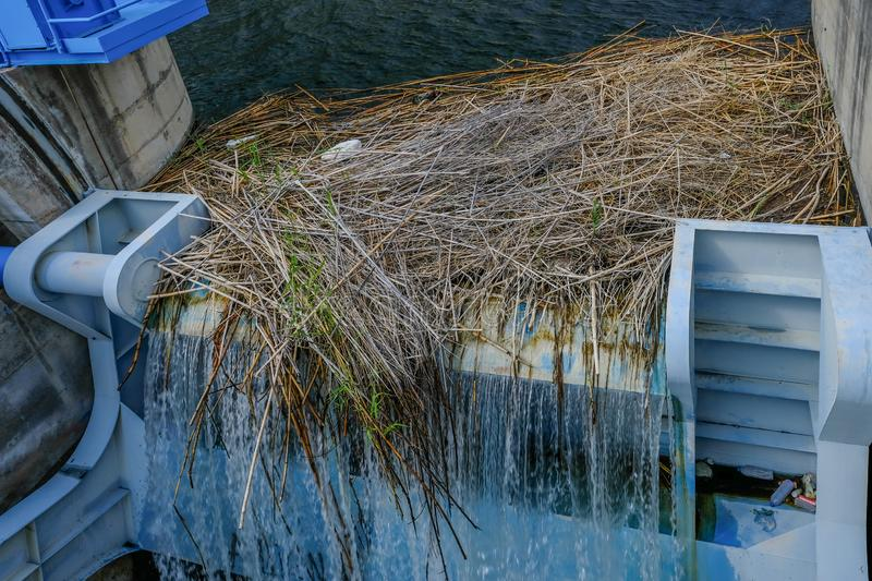 Overflowing sluice gate in a reservoir with twigs and debris stock images