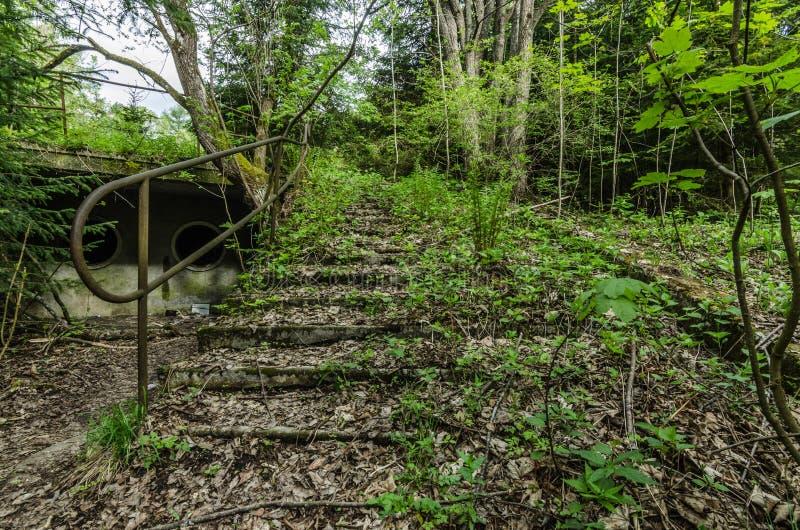 overgrown лестницы в ванне заплывания стоковые фотографии rf