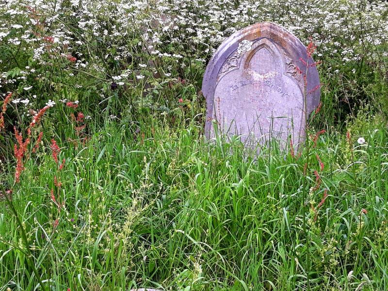 Overgrown могильный камень стоковые изображения rf