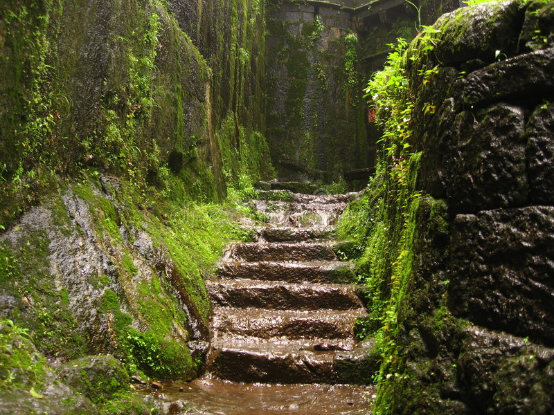 Overgrown ancient Indian fort royalty free stock images