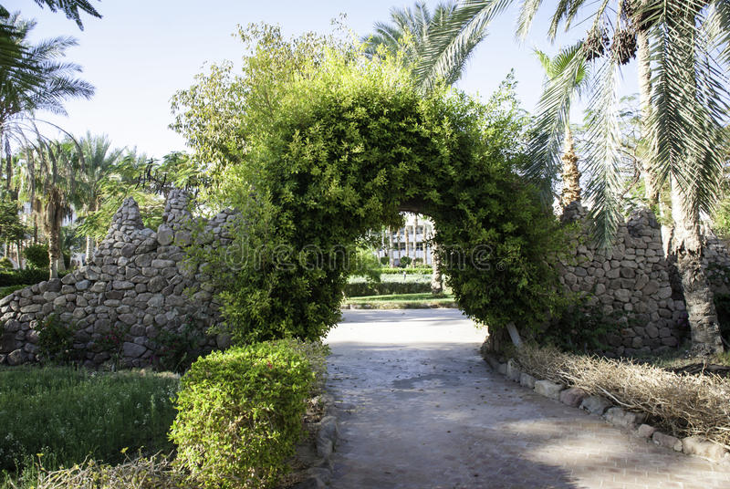Overgrown arch royalty free stock photo
