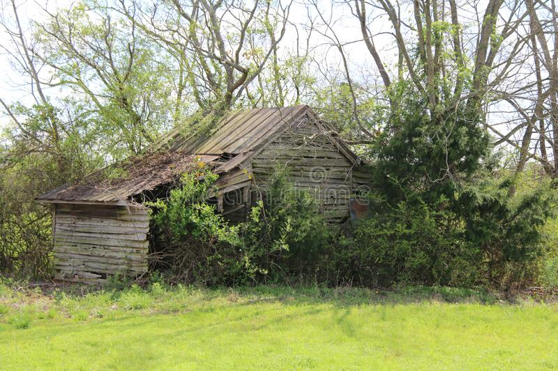 Overgrown green meadow abandoned country farm barn building royalty free stock photography