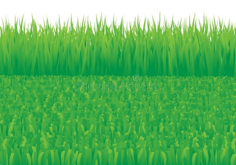 Overgrown_and_oblique_grass illustrazione vettoriale