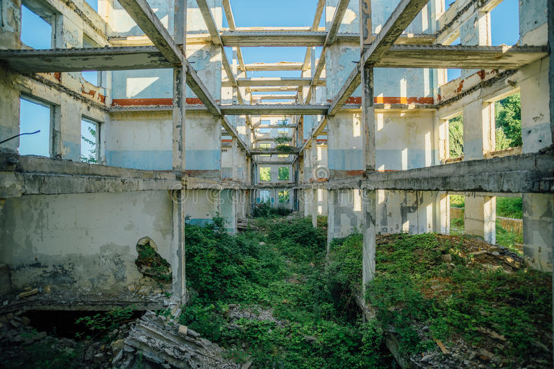 Overgrown ruins of house or industrial building royalty free stock images