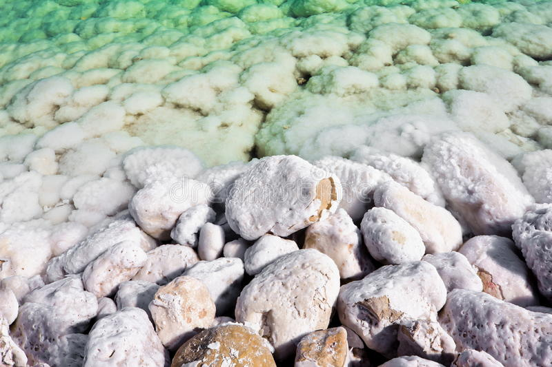 The overgrown stones salt waters of the dead sea stock photo