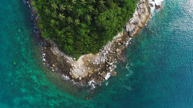 Overhead drone shot of tops of palm trees and turquoise sea water in Ko Pu island in Phuket, Thailand. Abstract texture, place for. Overhead drone shot of tops royalty free stock photography