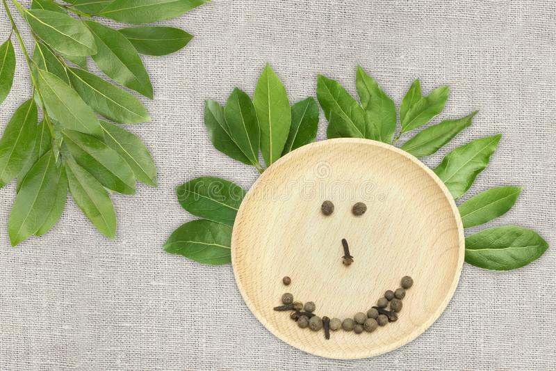An overhead photo of bay leaves like a funny face. Green laurel twigs and a plate wuth pepper corns on the linen cloth. Food, spic royalty free stock photos