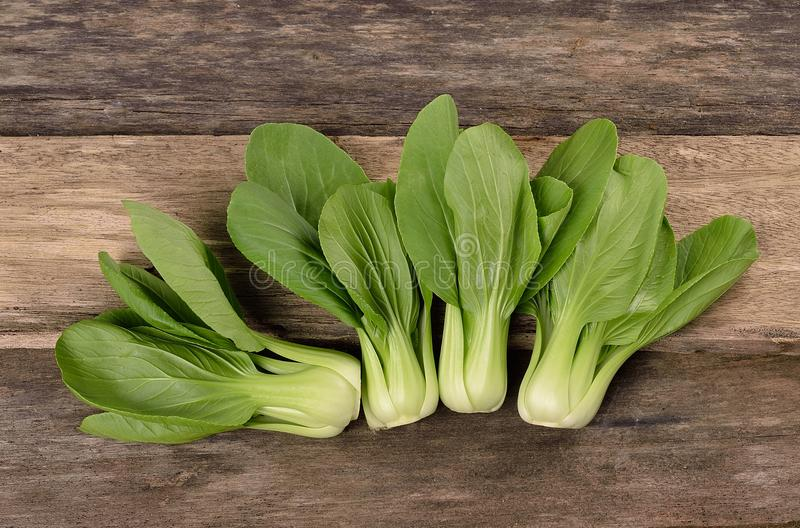 Overhead shot of Chinese cabbage, Bok Choy, on rustic wood stock photo