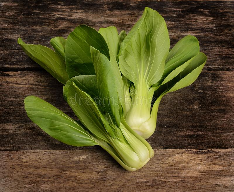 Overhead shot of Chinese cabbage, Bok Choy, on rustic wood royalty free stock photo