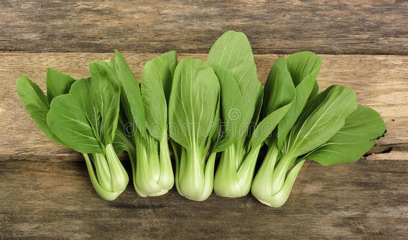 Overhead shot of Chinese cabbage, Bok Choy, on rustic wood. royalty free stock photography