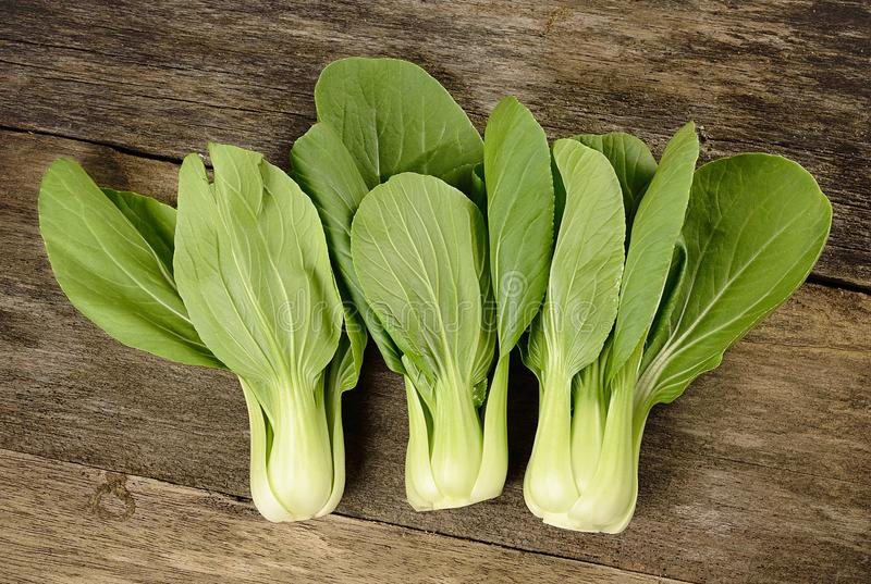 Overhead shot of Chinese cabbage, Bok Choy, on rustic wood royalty free stock images
