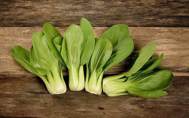 Overhead shot of Chinese cabbage, Bok Choy, on rustic wood stock image