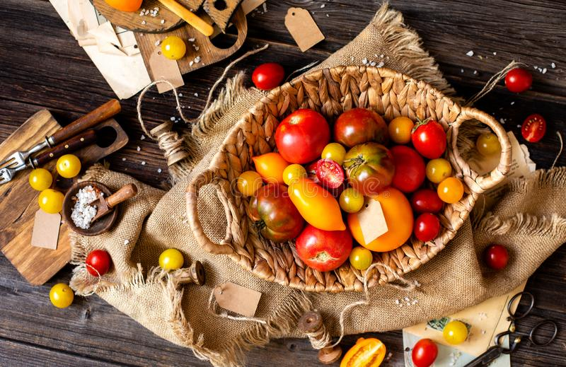 Overhead shot of homegrown assorted red, yellow, orange tomatoes in wicker straw basket. On sackcloth on rustic wooden table, autumn harvesting royalty free stock photo