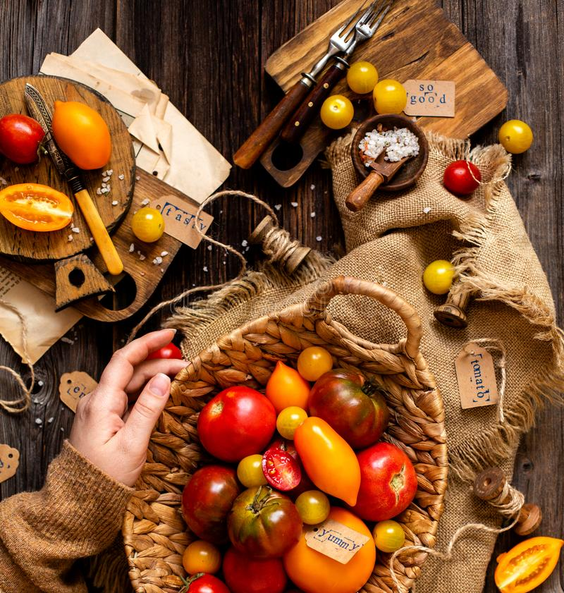 Overhead shot of homegrown assorted red, yellow, orange tomatoes in wicker straw basket in woman hands. On sackcloth on rustic wooden table, autumn harvesting stock photography